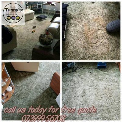 before and after cleaning a freen shaggy carpet