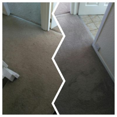 a carpet before and after professional carpet cleaning