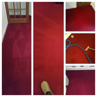 before and after professional carpet cleaning