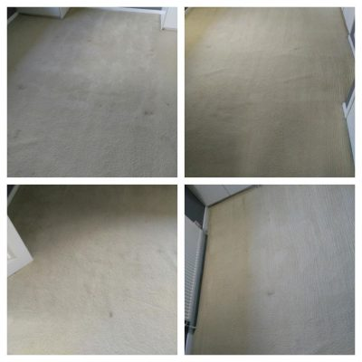 before and after cream carpets cleaning