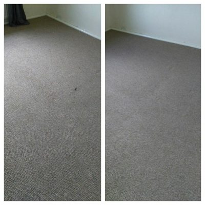 Before and after wool carpet cleaning